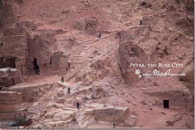 petra015