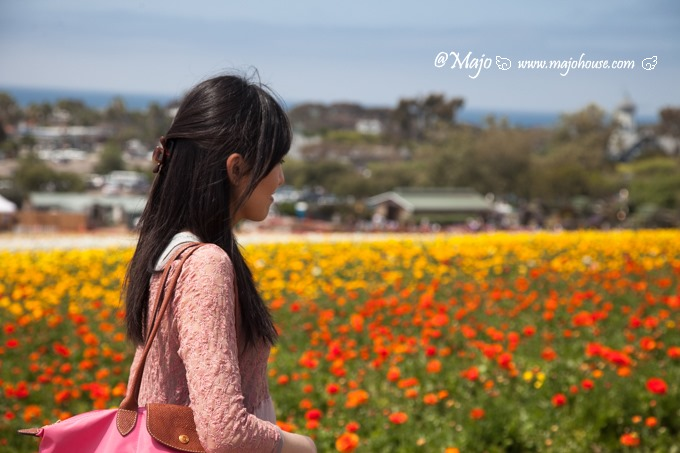 MajoHouse_BlogPhoto