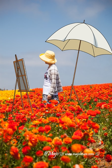 CarlsbadFlowerField_021