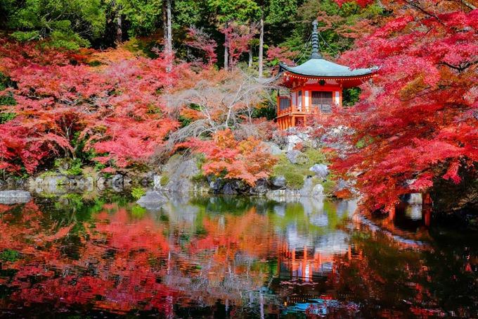Kyoto_Daigoji_Fall