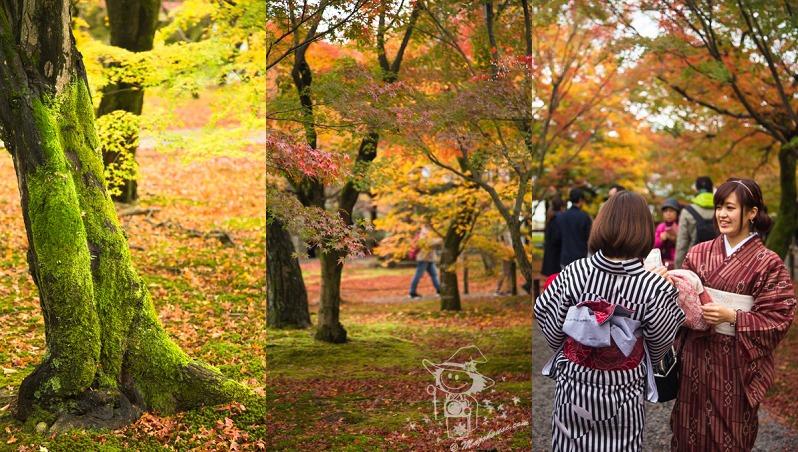 Kyoto_Tofuku-Ji_00