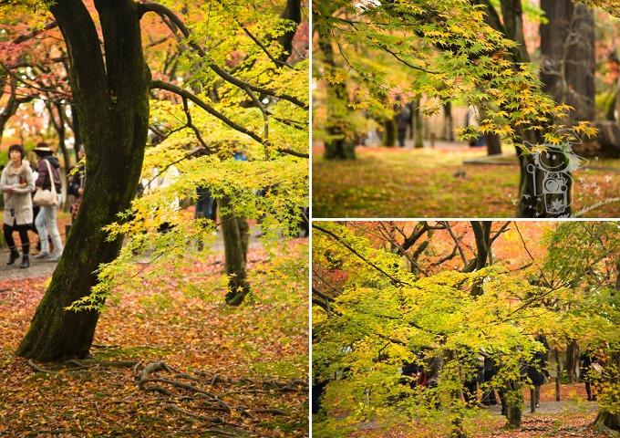 Kyoto_Tofuku-Ji_04