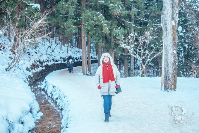 SnowMonkey_64