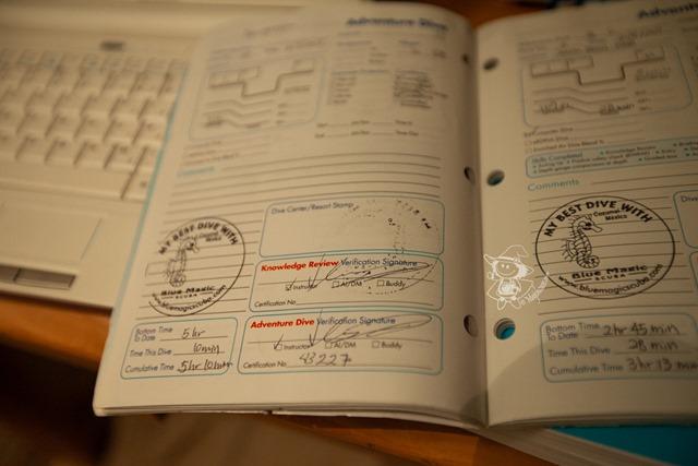 Travel2011_4
